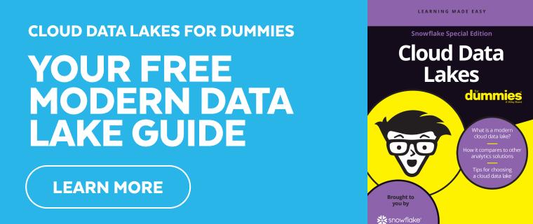Cloud Data Lake for Dummies